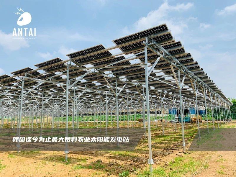 光伏+农业,安泰新能源支架系统助力引领农业发展新模式