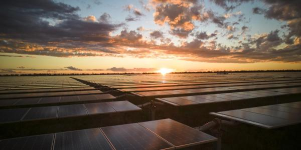 Nextracker为Intersect Power 在美国的728 MW太阳能项目提供跟踪器和优化服务
