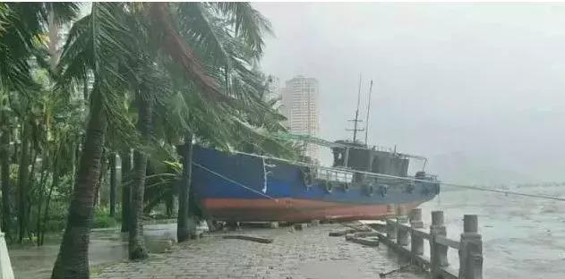 无惧台风|保威光伏支架对182/210组件的风洞测试