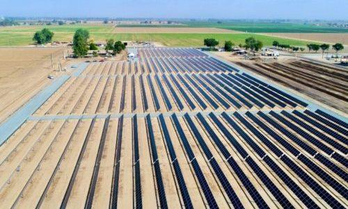 Renewable Solar 在加州奶牛场安装 2.82 兆瓦太阳能跟踪器项目